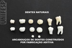 UNIFESP desenvolve modelo tridimensional de dente humano