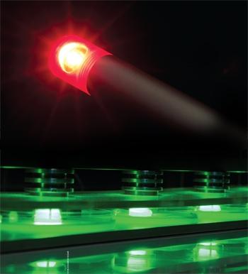 Avançam os estudos para uso de LEDs contra bactérias e fungos